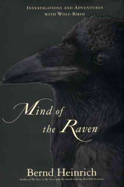 Mind of the Raven book cover