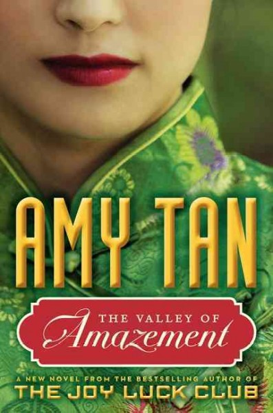 The Valley of Amazement book cover