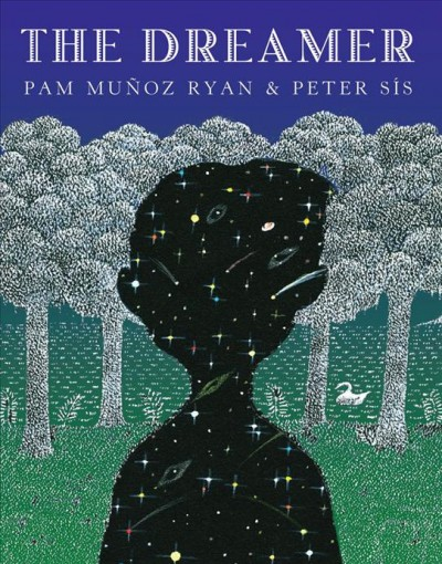 Image of trees with silhouette of a boy; silhouette is filled with night sky (stars, comets, etc.)-book cover