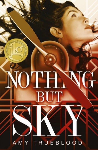 Nothing But Sky book cover
