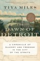 Cover: The Dawn of Detroit