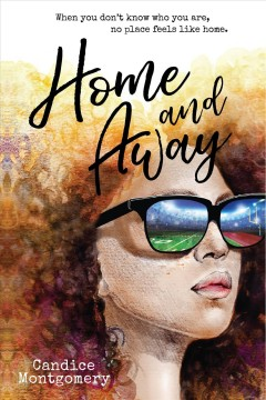 Home and Away book cover