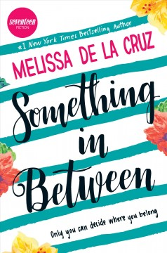 Something In Between book cover