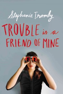 Trouble is a Friend of Mine book cover