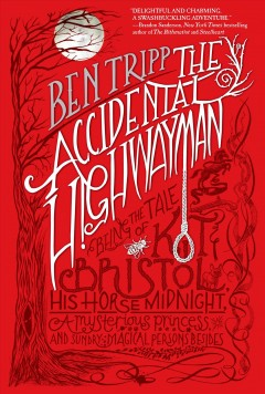 The Accidental Highwayman book cover