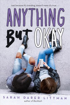 Anything But Okay book cover